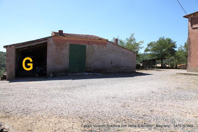 Grosseto Invest Immobiliare vende Magliano-Casale-Vivarelli-Colonna-con-terreno