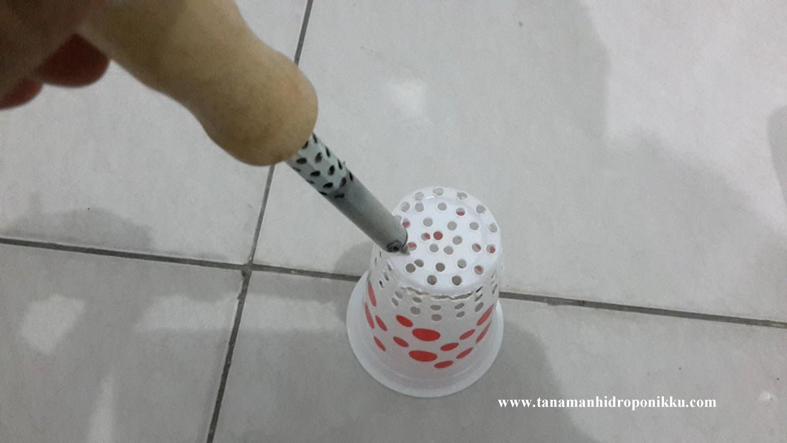 Cara Membuat Netpot Tanaman Hidroponik Bercocok Tanam