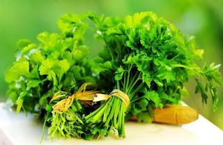 rau mùi chữa rối loạn kinh nguyệt