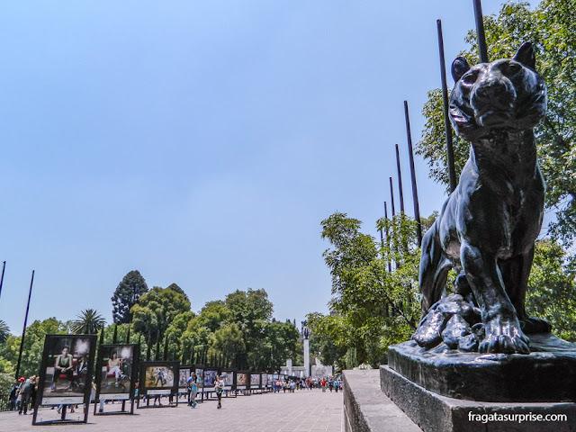 Bosque de Chapultepec, Cidade do México