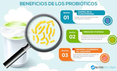 Beneficios consumir probióticos