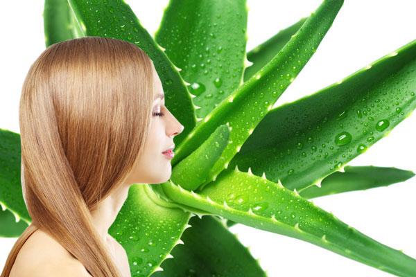Caen los cabellos en que primavera de las vitaminas no basta