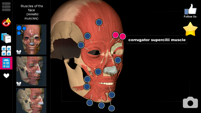 Learn New Things Learn Anatomy In 3d Android App Best App For Anatomy