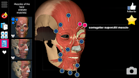 Learn Anatomy in 3D in Android Phone (Best app for Students),best medical app,how to learn mmbs,learn anatomy,human organic detail,3d model of human organ,detail,information of organ,anatomy learning,learn in android phone,medical app,best app for medical student,best app for doctors,learning app,anatomy 3d app,learning human body parts,diseases,how to treat,drugs,treatment,brain,heart,muscles,urinary,digestive,blood pressure,anatomy learning,best free app for android Learn Anatomy in 3D Android App (Best App for Anatomy)