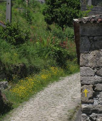 sinalização no Caminho de Santiago de Compostela