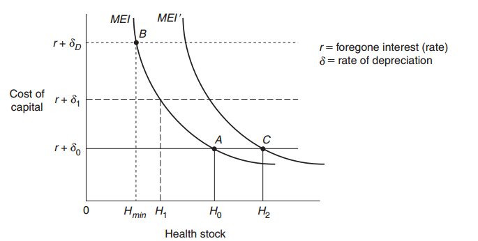Grossman model studyhav change in equilibrium ccuart Images