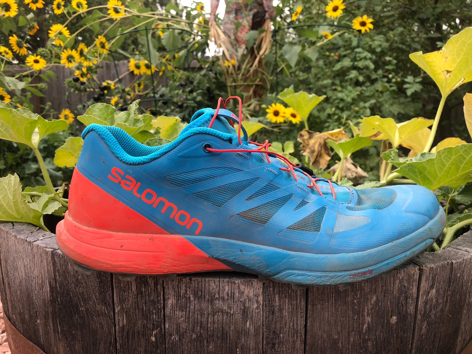 c04840ab2d2fe8 Road Trail Run: Salomon Sense Pro 3 Review