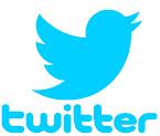 Twitter logo, a bird bird