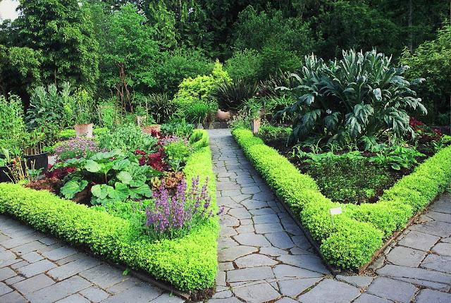 backyard landscaping a flower shaped garden