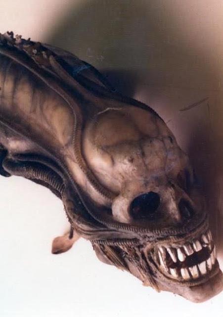Los primeros diseños del monstruo de Alien