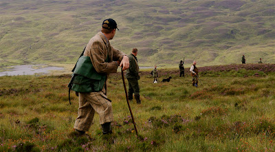 driven grouse hunt