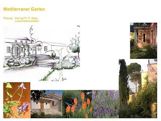 Beispiele für die Bepflanzung eines mediterranen Gartens