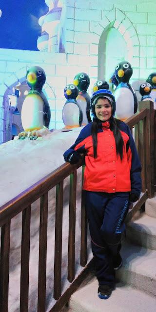pinguins e iglus artificiais