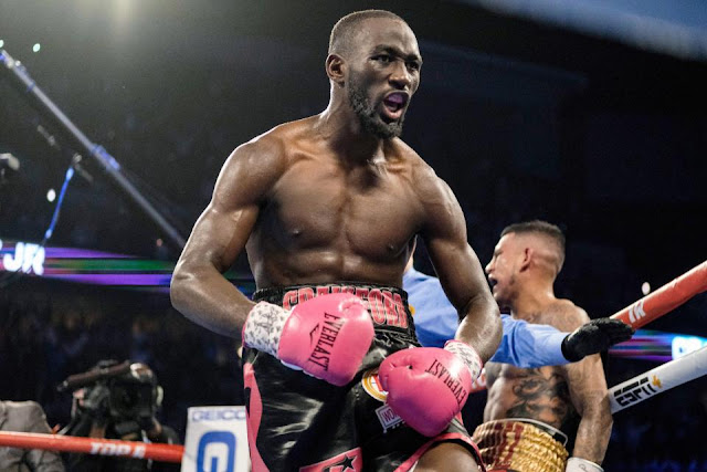Terence Crawford WBO Welterweight champion