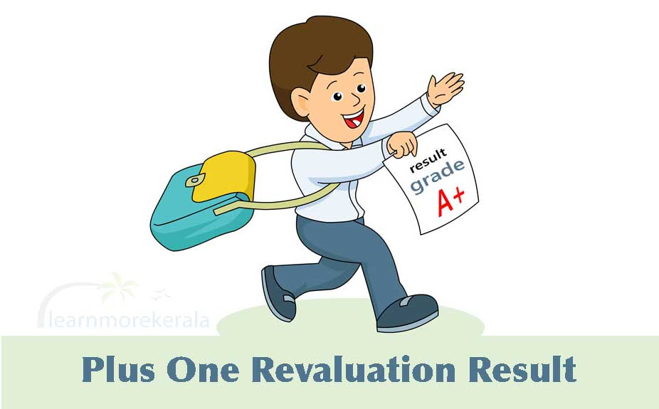plus one revaluation result 2019