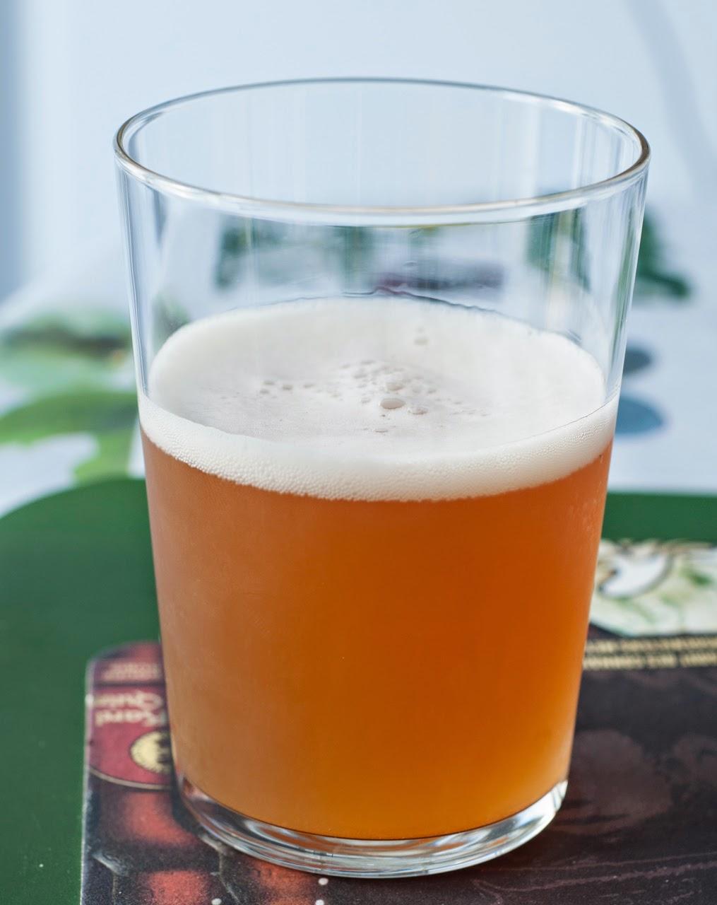 Dupont Biere de Miel (Biologique)