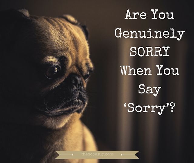 Are You Genuinely SORRY When You Say 'Sorry'?