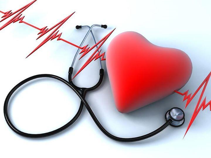 b6939daf1b2d5 La presión arterial es necesaria para aportar oxígeno y nutrientes a los  órganos corporales.