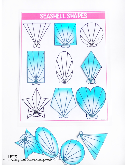 Seashell Shape Matching