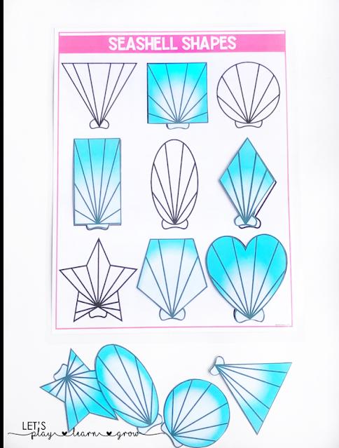 Seashell Shape Matching