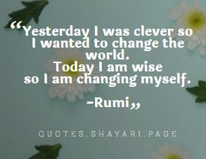 Rumi Quotes-Changing myself Quotes