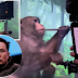 Elon Musk's startup Neuralink  shows monkey with chip implants playing video game