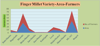 Varietal Diversity of Finger Millet