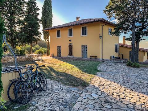 carbon road bike rental shop hybrid casciana terme cycling tuscany pise