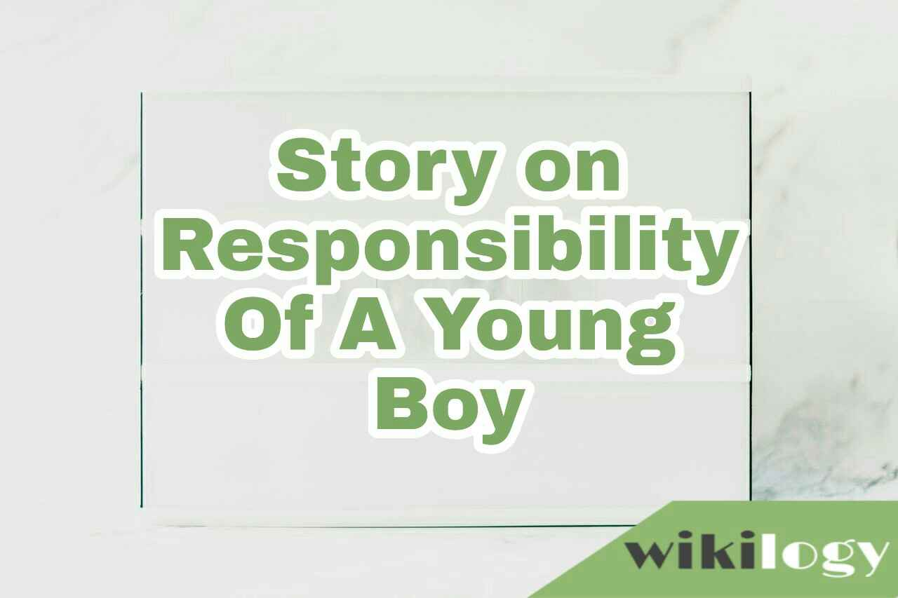 Honesty and sense of responsibility story