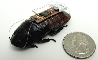 Insect Cyborgs - Biomechatronic Spies