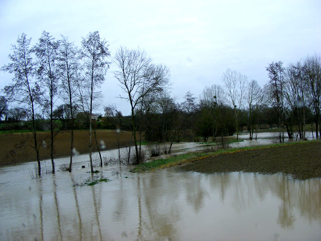 Flooded Aigronne River, December 2019.  Indre et Loire, France. Photographed by Susan Walter. Tour the Loire Valley with a classic car and a private guide.