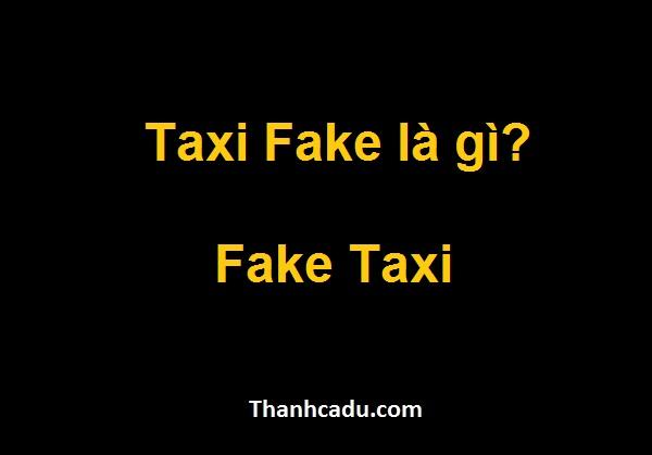 taxi-fake-la-gi