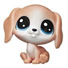 LPS Keep Me Pack Pet Playhouse Beagle (#No#) Pet