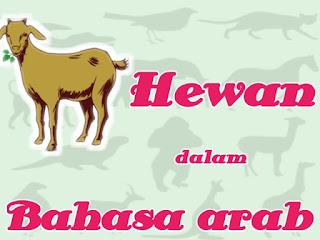 nama-nama binatang dalam bahasa arab