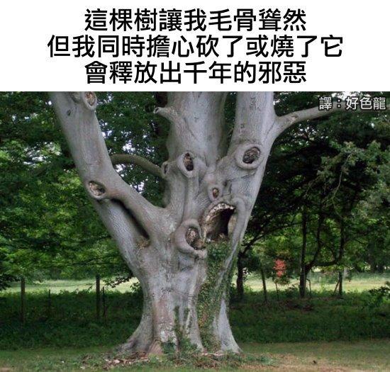 https://1.bp.blogspot.com/-svdJzQmQ60o/YQOnmS5afSI/AAAAAAABE24/6eEjUMAPL2UuOCfo3QFRcJt7Gf44G2VPgCLcBGAsYHQ/s16000/05_evil_tree.jpg