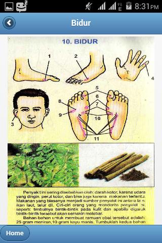 Titik Pijat Refleksi Untuk Mengobati Bidur Lengkap Dengan Saran Ramuan Herbal