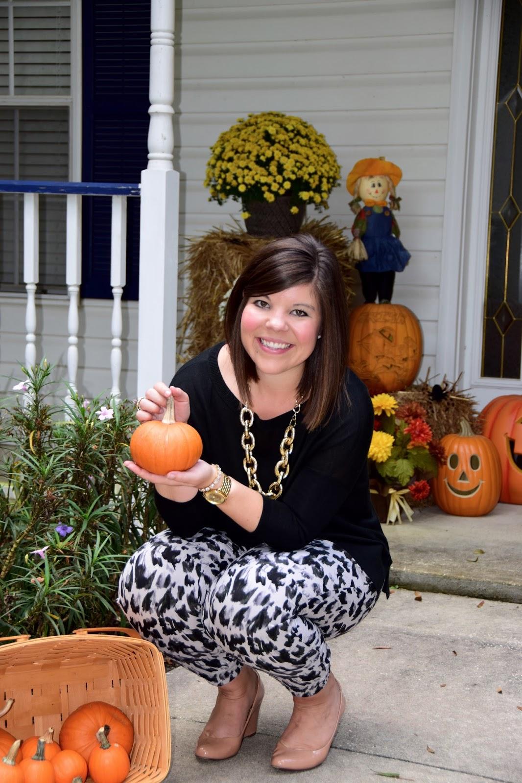 Leopard and Pumpkins
