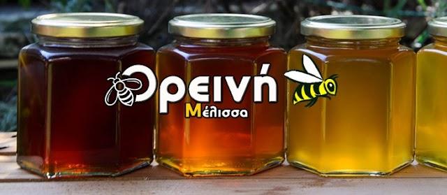 Νέα μεγάλη έρευνα για το ΕΛΛΗΝΙΚΟ ΜΕΛΙ: Εξέτασαν μέλι Πεύκου, Θυμαριού και Έλατου... Τα αποτελέσματα απίστευτα