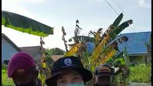 TNI AL Libatkan KOWAL Distribusikan Kebutuhan Korban Banjir Kalsel
