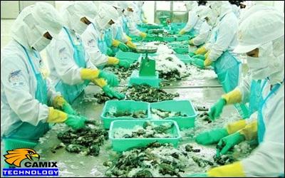 Công ty tư vấn công nghệ xử lý nước thải nhà máy thủy sản - Mức độ ảnh hưởng đến môi trường