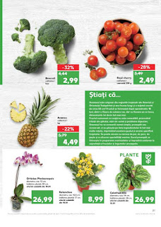 CATALOG KAUFLAND 9 -  15 ianuarie 2019 legume si fructe proaspete