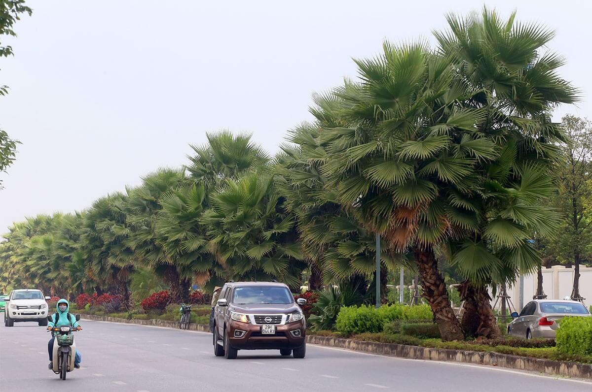 Đường xá tại Long Biên vô cùng rộng rãi.