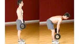 stif leg deadlift by body fitness