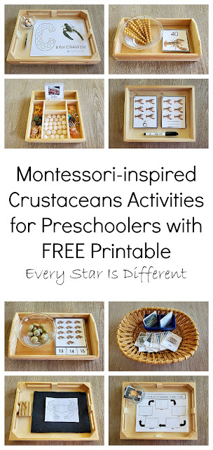 Montessori-inspired Crustaceans Activities for Preschoolers with FREE Printable