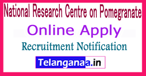 NRCP National Research Centre Pomegranate Recruitment Notification 2017 Apply
