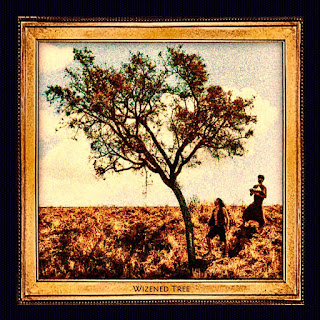 """WIZENED TREE debut EP """"Rock N Roll from Tocantins"""""""