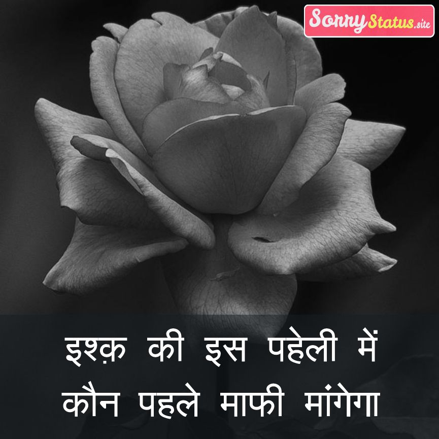 Hindi Sorry Status
