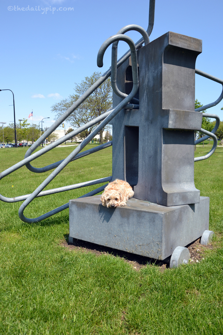 confused dog sitting on statue