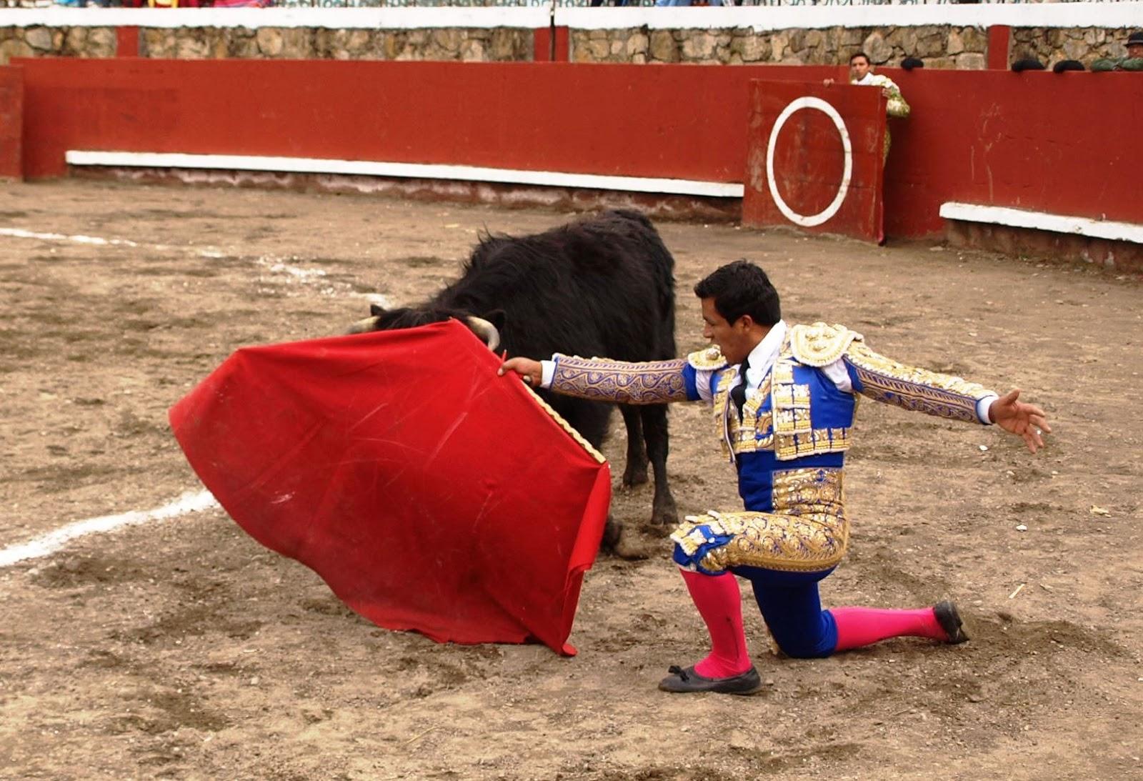 COLQUEMARCA: corrida de toros por el aniversario promete ser a lo grande