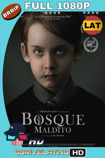 EL Bosque Maldito (2019) BRRip 1080p Latino-Ingles MKV